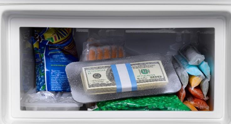 Можно хранить деньги в холодильнике