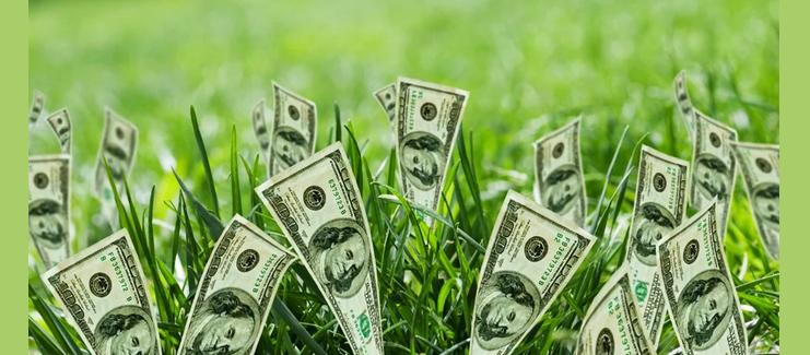 Можно хранить деньги в земле
