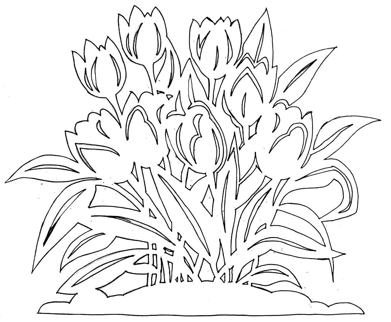 шаблоны цветов на открытку к 9 мая одном маленьком эстонском