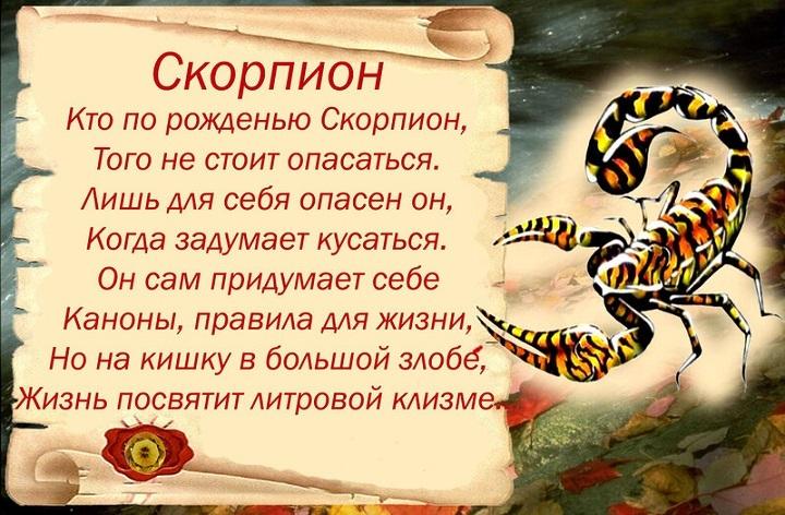Женщина скорпион собака какая она в жизни